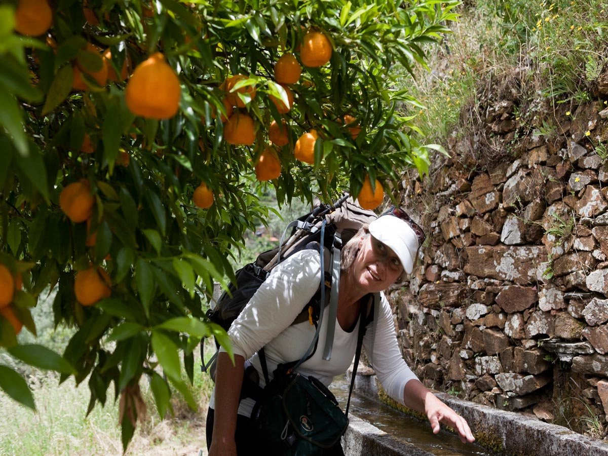dag-4_Loriga-terrassenwandeling-023