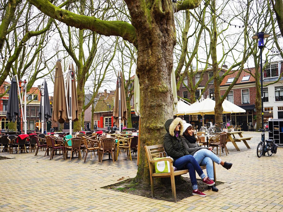 Delft-Groene-Hart-Beestenmarkt