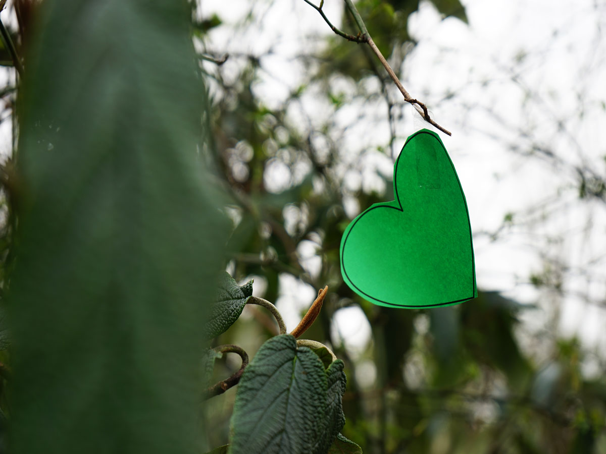 Delft-Groene-Hart-valentijnshart