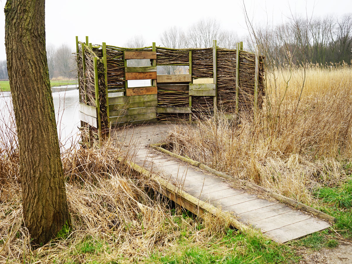 Delft-Groene-Hart-vogelkijkscherm