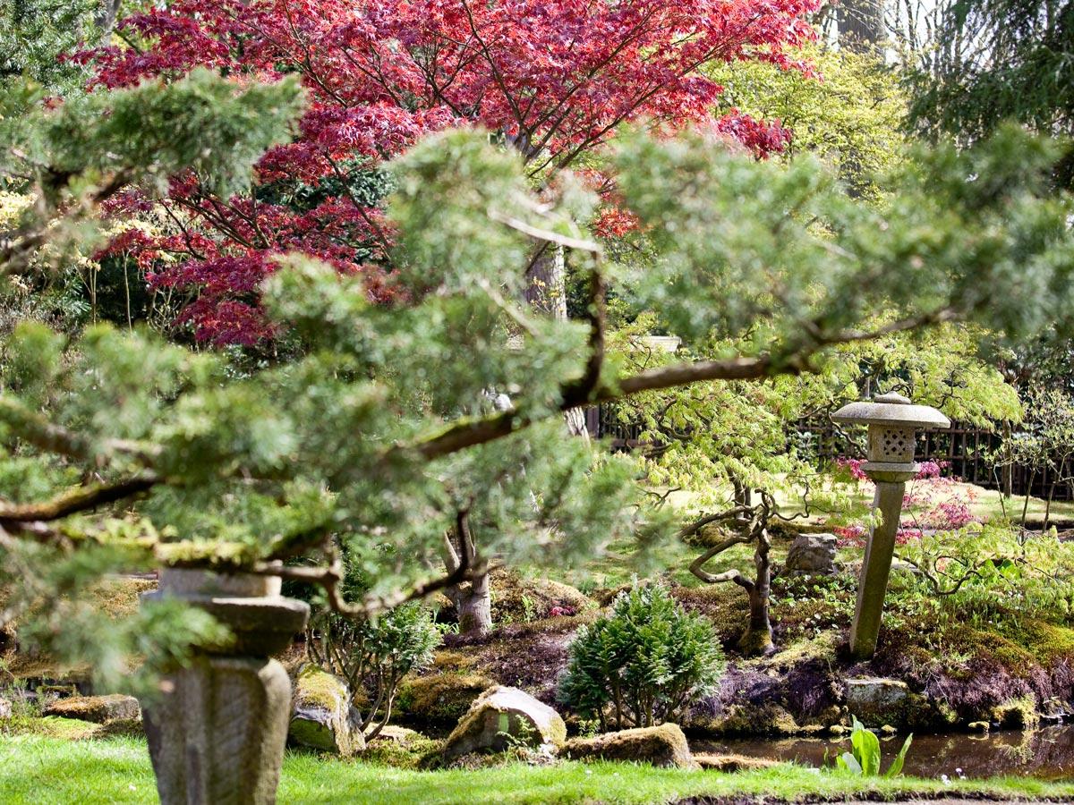 Clingendael_Japanse-Tuin-003