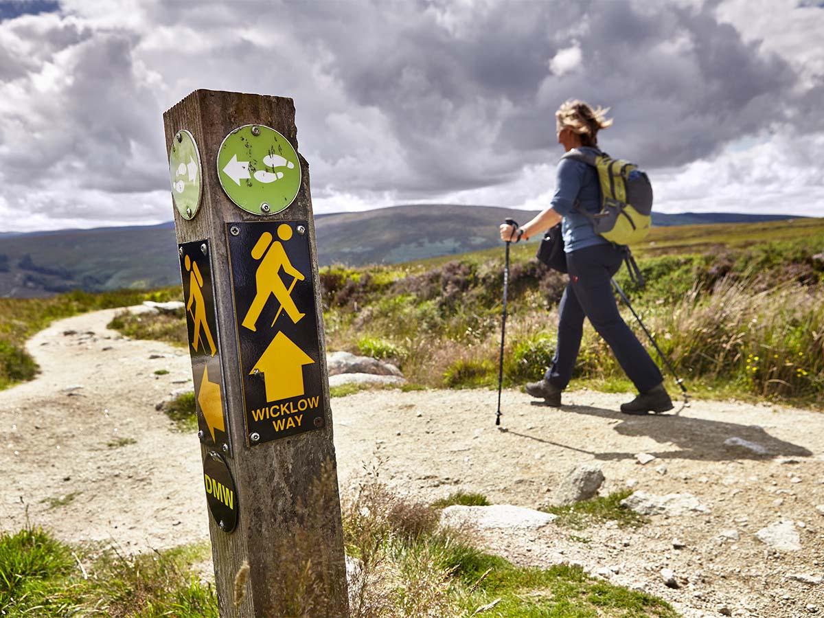LR Trail marker Kilmashogue Jonathan Andrew IMG_1893