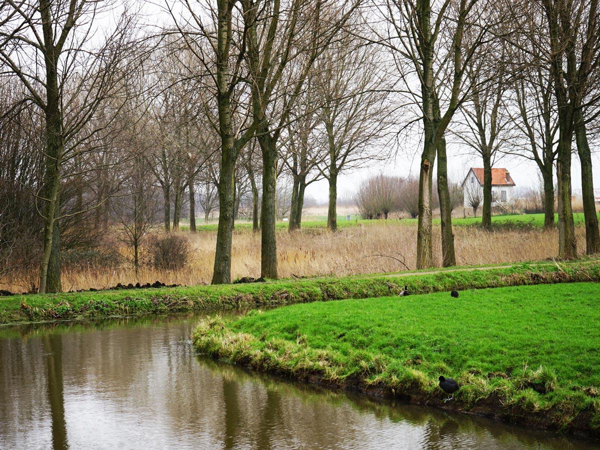 Delft-Groene-Hart-Balijbos-2