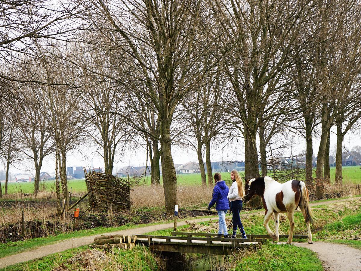 Delft-Groene-Hart-Balijbos