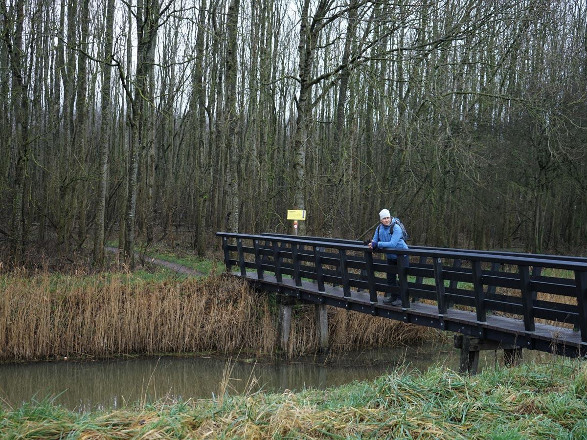 Bolsward-Flietsterbosk