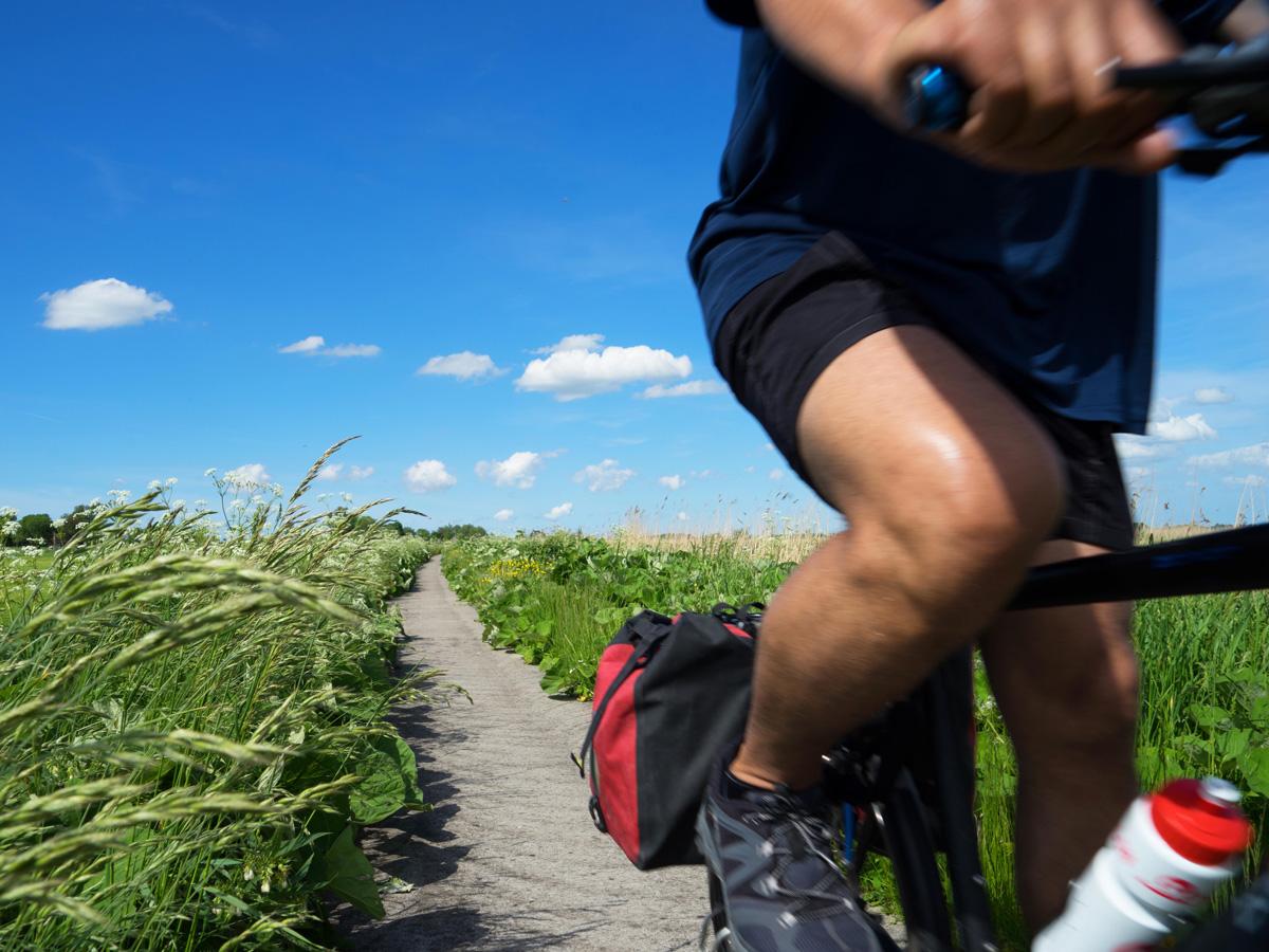 FAC-Friesland-fietsen-tussen-zomerbermen