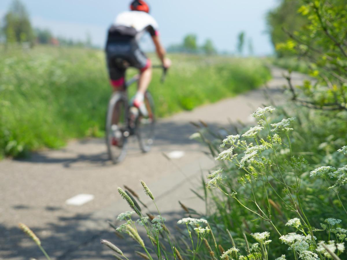 FAC-Friesland-racefiets